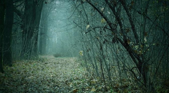 Oddychając martwą mgłą