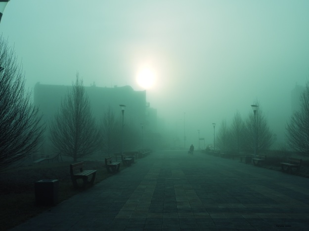 mgła13.jpg