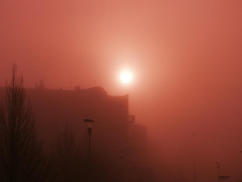 mgła3.jpg