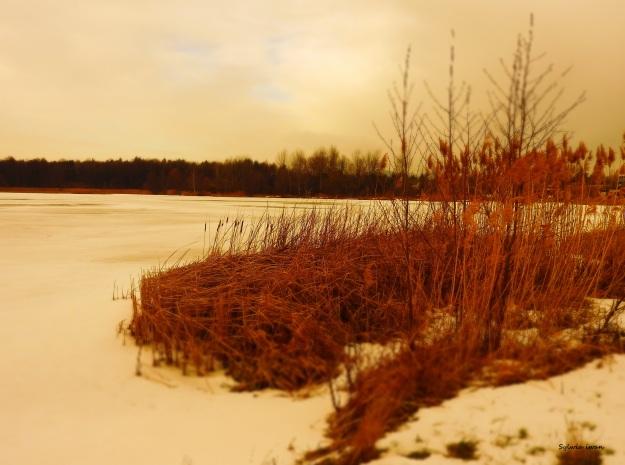 jezioro6.jpg