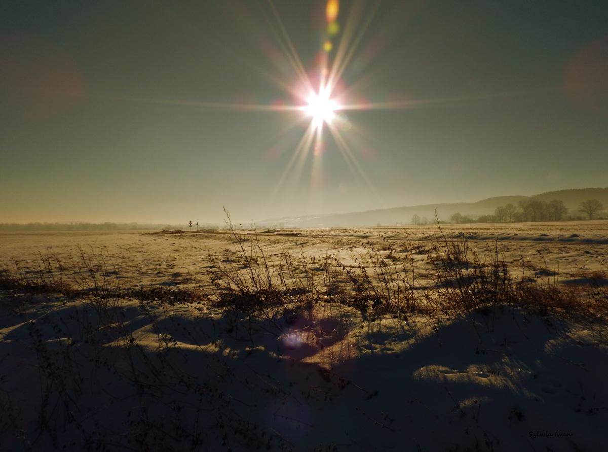 Witając słoneczną przestrzeń