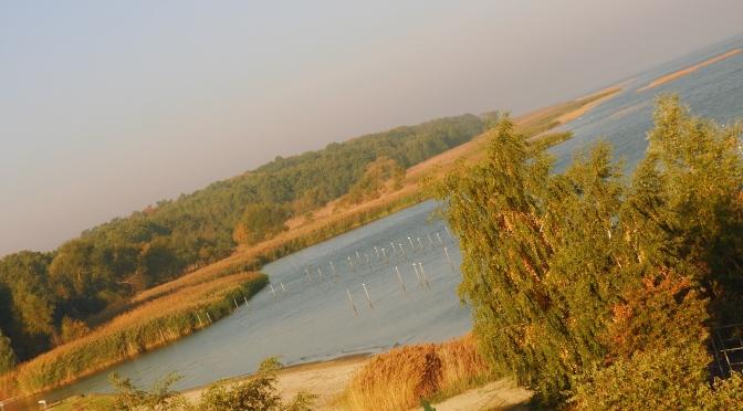 Ujście Odry i Zalew Szczeciński, jesień