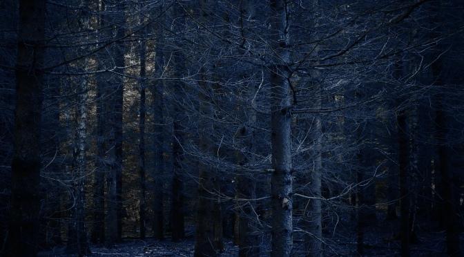 Drzewomroczki