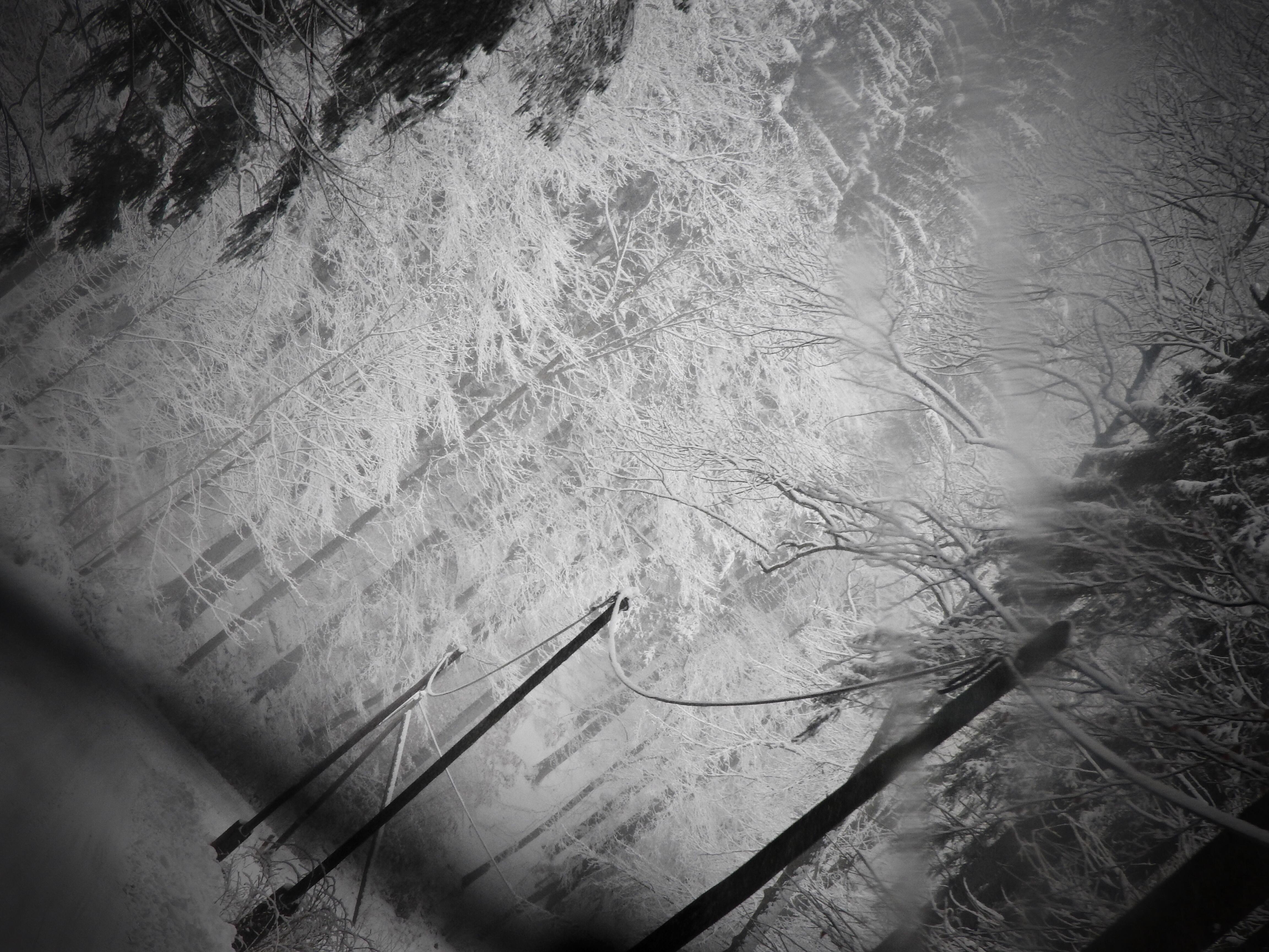 Biała bezseność / White insomnia