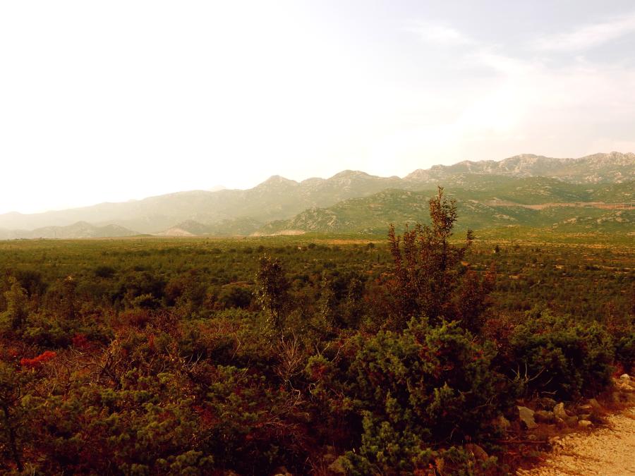 I want to Escape to The Mountains Chcę uciec wgóry
