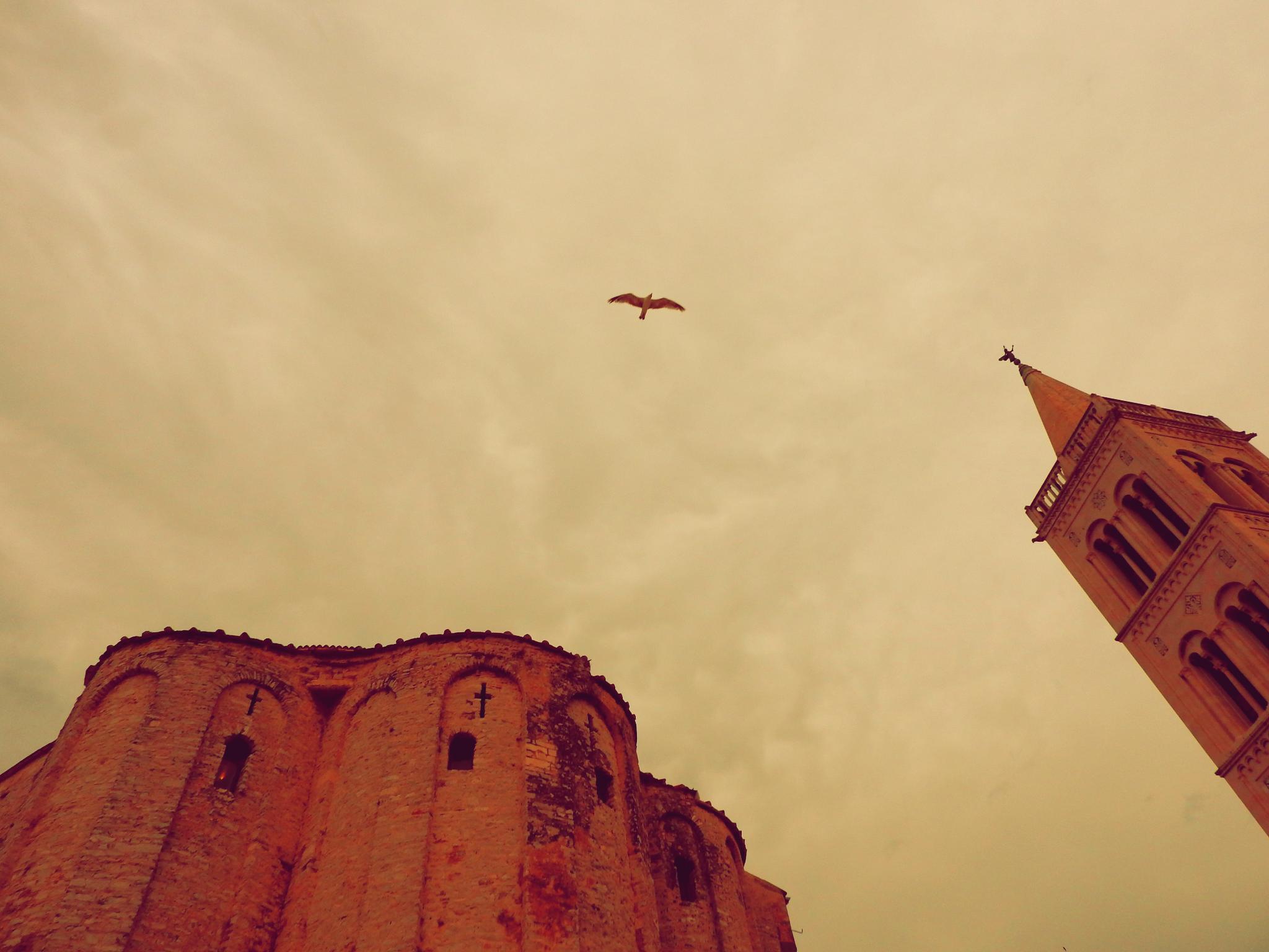 Zadar Old Town
